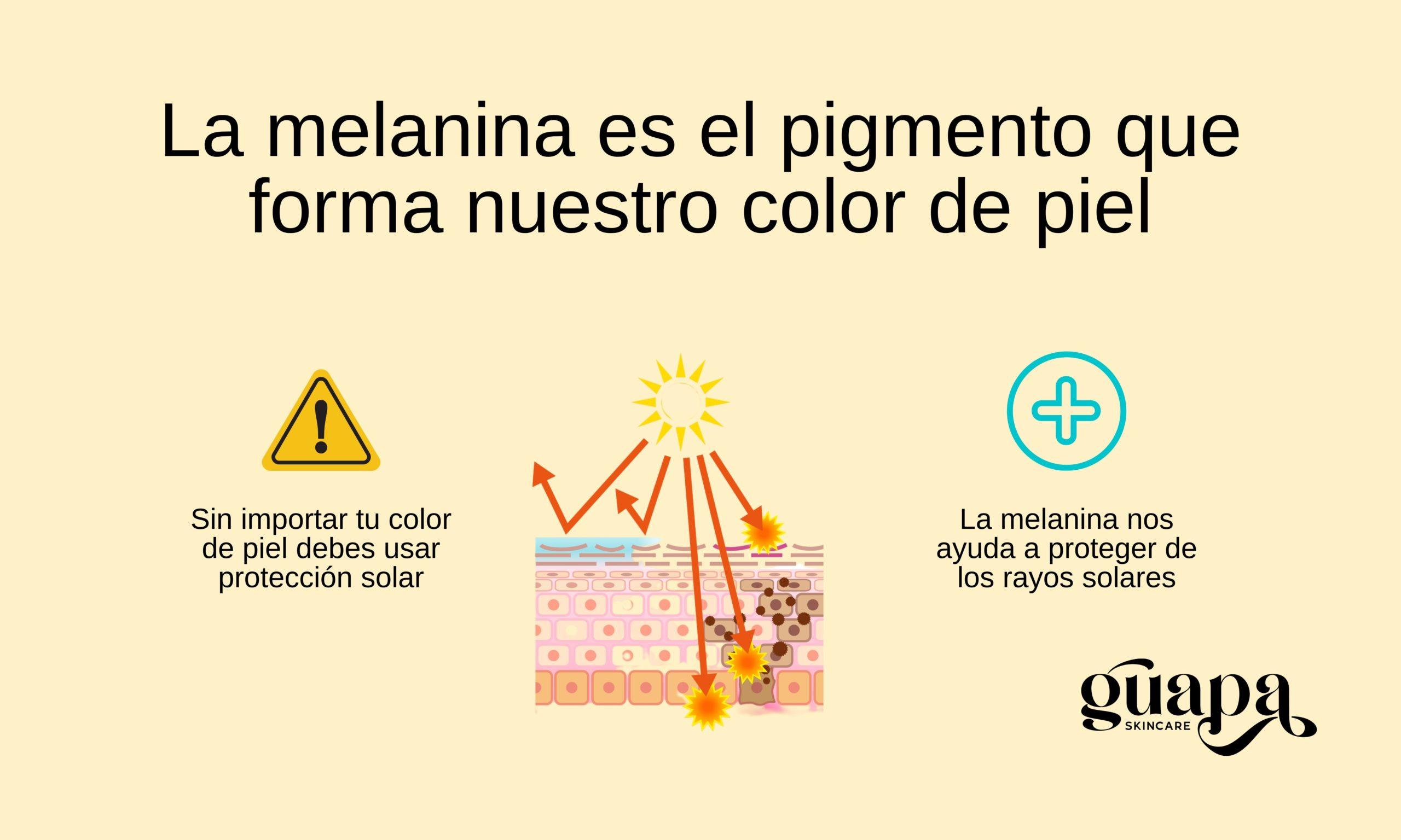 La melanina y el color de piel